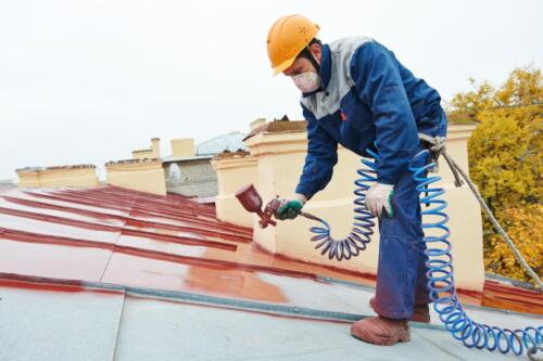 Roof Painting Project
